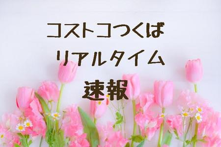 21-03-01-23-34-37-578_deco.jpg