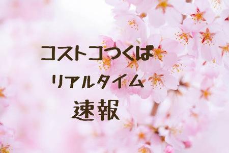 21-04-01-19-27-13-010_deco.jpg