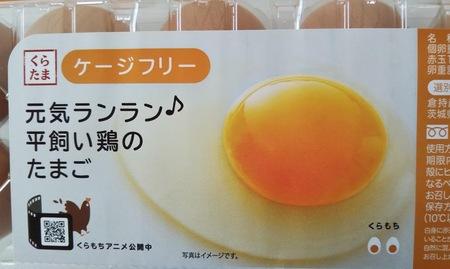 ケージフリー卵_3.JPG
