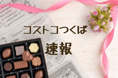 kosupatosokuhou_2gatu.jpg